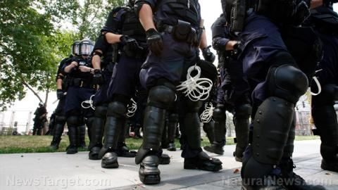Image result for From Freedom to a Police State In 7 Easy Steps