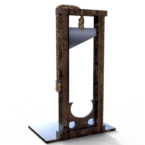 The Present Leftist Coup In USA Will Culminate with a Reign of Terror Including the Unlimited Use of Guillotines, Totalrehash.com