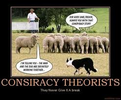 sheep conspiracy theorist