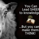 SHEEP TO KNOWLEDGE