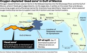 Gulf Dead Zones Caused By Corexit