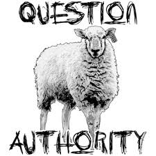 sheep question authority